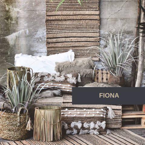 FIONA(2) 2