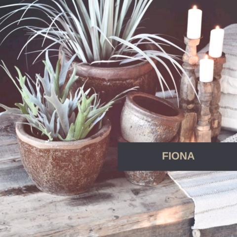 FIONA (2)